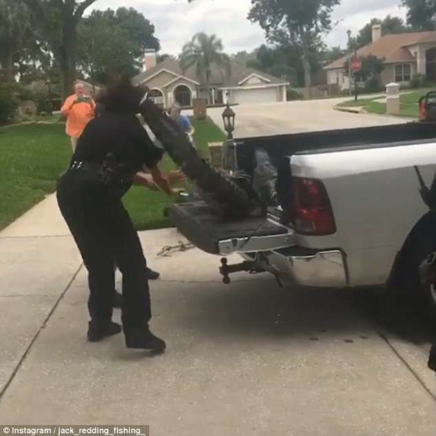 美国鳄鱼闯居民区被捉 五花大绑后仍袭击两警察