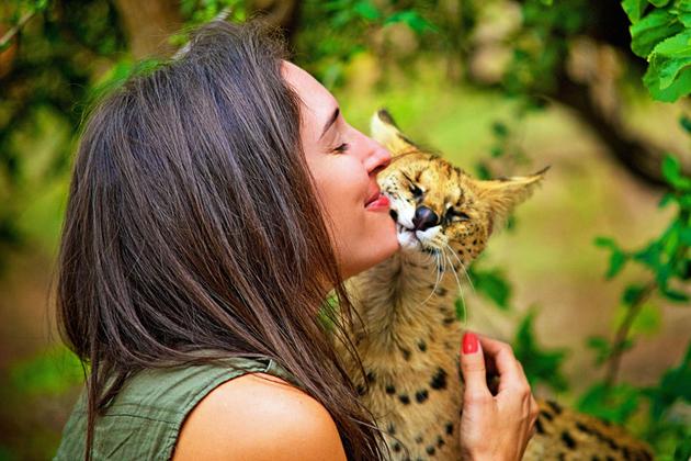 """动物向人类""""表白""""时刻 真情流露满满是爱"""