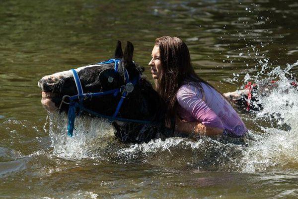 英马匹交易会拉开帷幕 吉普赛马主骑马过河洗马求善价