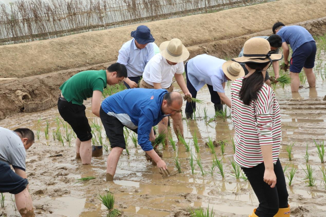 中国外交官在朝鲜支农