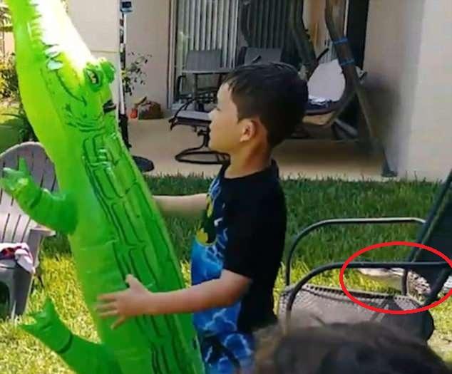 美男孩后院玩充气鳄鱼玩具 不知身旁藏有真鳄鱼