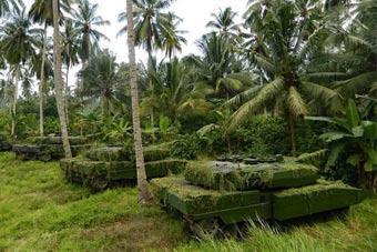 豹2坦克热带丛林伪装 你能看出图中有几辆?