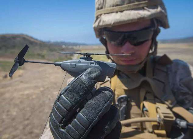 """美陆军启用微型侦察无人机""""黑色大黄蜂"""""""