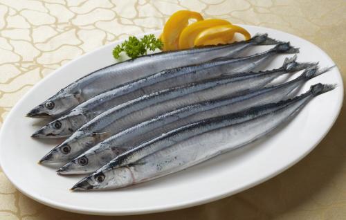 嫌自己捕捞不到秋刀鱼 日本拟在国际会议提出限捕方案