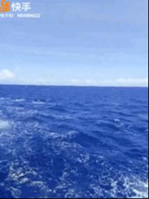 世界海洋日:大海的秘密 快手告诉你