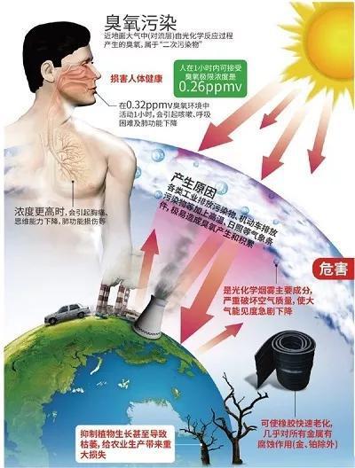 图2 臭氧的危害(引用自:近地臭氧有何危害、如何应对?来源:《科技生活》周刊https://www.cdstm.cn/gallery/kjzd/201707/t20170725_536795.html)
