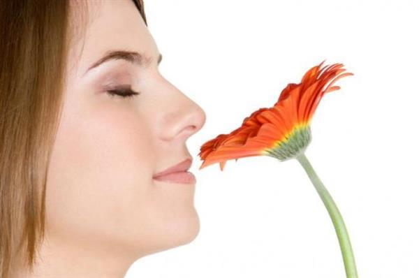 神奇新发现:嗅觉灵敏的女性 OOXX更嗨