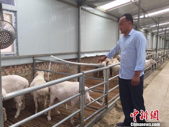 """甘肃庆城农民变身""""股份农民"""":打一份工挣两份工钱"""