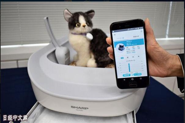 夏普推出物联网猫厕所 可测量体重和尿量