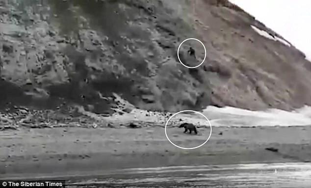 俄罗斯一名渔夫激怒棕熊遭其追赶入冰河溺死