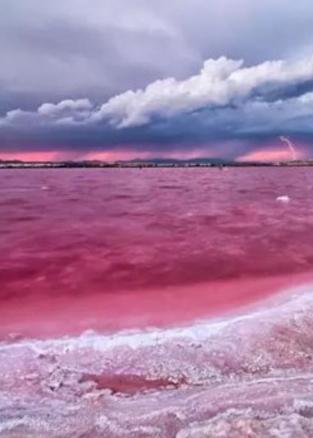 全球超性感的9个粉红拍照圣地
