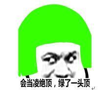 """""""绿委""""提案散布假新闻关3天 恐怕民进党很多人会""""关到死"""""""
