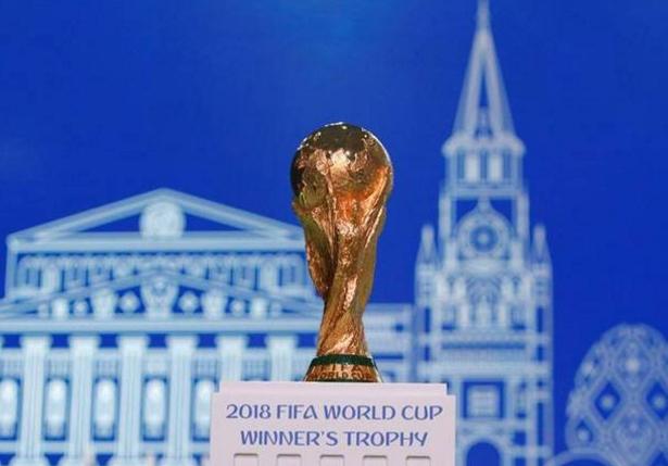 """贝利、章鱼后 AI接棒世界杯""""预测帝""""称巴西夺冠"""