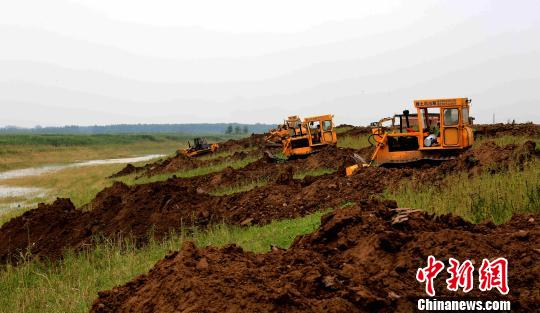 6月3日,35台大型推土机、挖机开始拆除下塞湖矮围。 廖文 摄