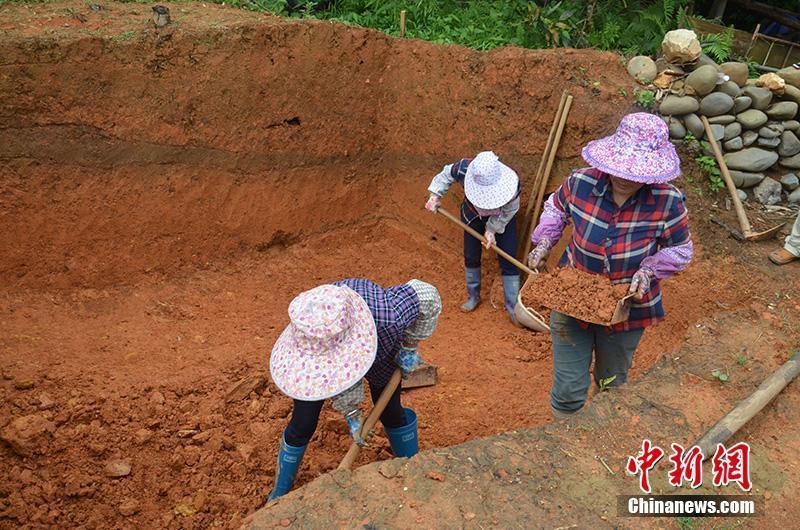 """广西凌云发掘""""旧石器时代遗址"""" 已出土少量石制品"""