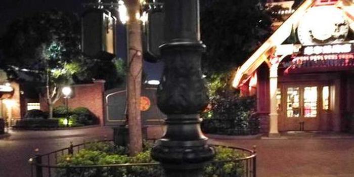 女童迪士尼撞灯柱缝两针 园方:赔个毛绒玩具