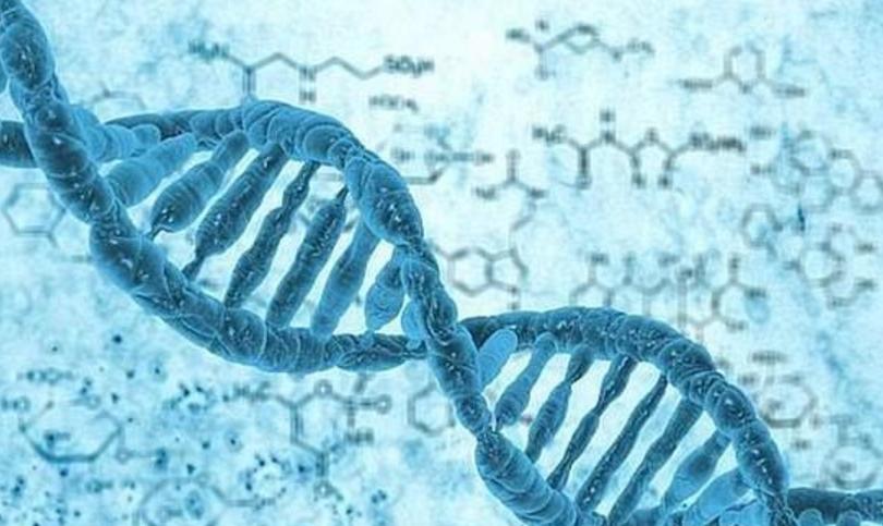 美军想用DNA存储数据:数据量庞大还能快速读取