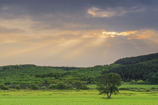 黑龙江鸡西:实拍北大荒田野风光