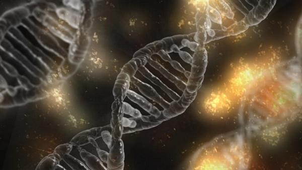 美国研发DNA存储数据:1EB起步
