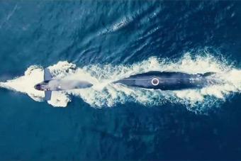 生日快乐!中国海军首支潜艇部队