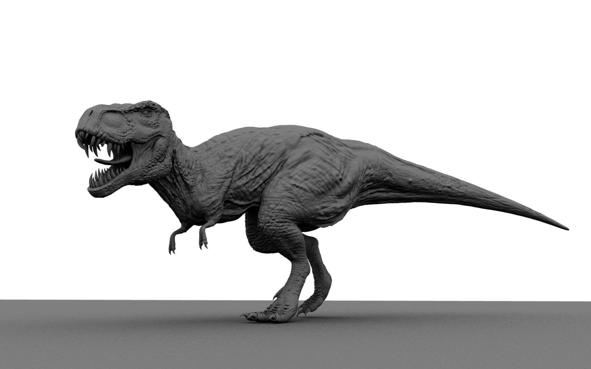 日本北海道恐龙化石或为暴龙类 有助揭晓体型秘密