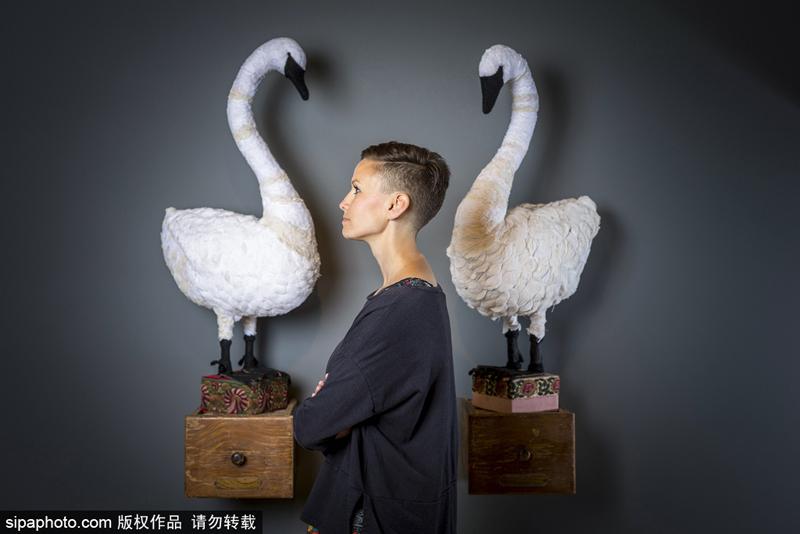 英国艺术家制作布艺动物 妙手匠心栩栩如生
