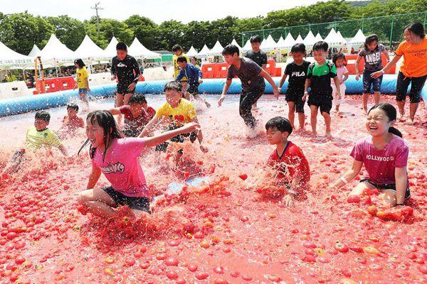 """韩国光州举办年度西红柿节 儿童乐享夏日""""番茄浴"""""""