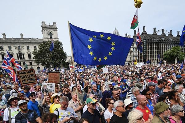 英国脱欧公投两周年 上万民众在伦敦参加示威游行