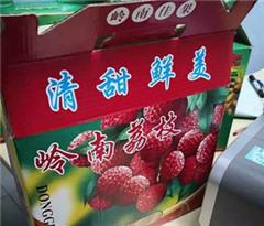 违反检疫条例 男子从中国带荔枝入境马来西亚被充公