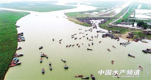 """用大数据""""养鱼"""" 提升渔业效率和质量"""