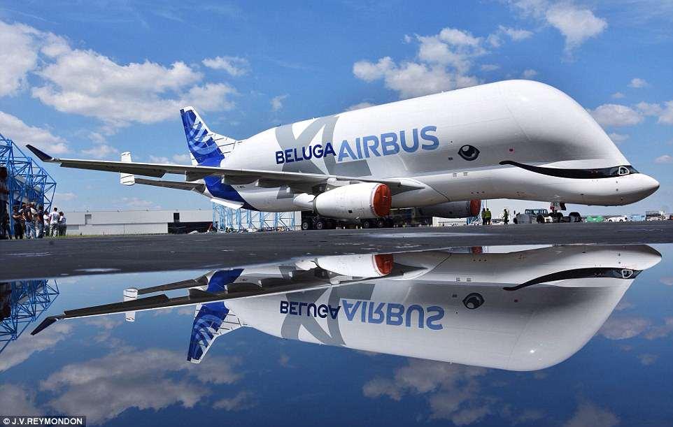 """惟妙惟肖!空客""""白鲸""""飞机全新涂装来袭"""