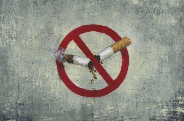 法国斯特拉斯堡市实施公园禁烟令 系全法首例