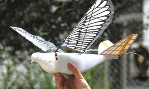 中国研发这种仿生无人机 和鸟一样能骗过雷达