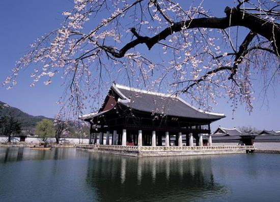 在韩国外国留学生增加 多为亚洲国家短期语言生