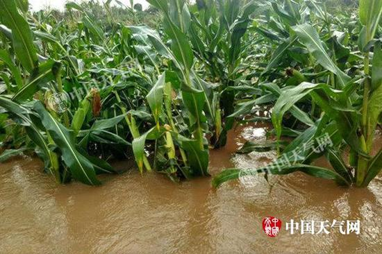 强降雨致四川多地受灾 成都广元等10市2日有暴雨