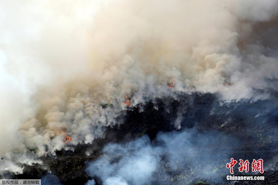 英国荒野发生大火浓烟弥漫