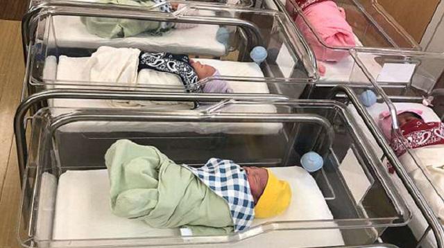 婴儿潮:美国一医院41小时接生48个宝宝