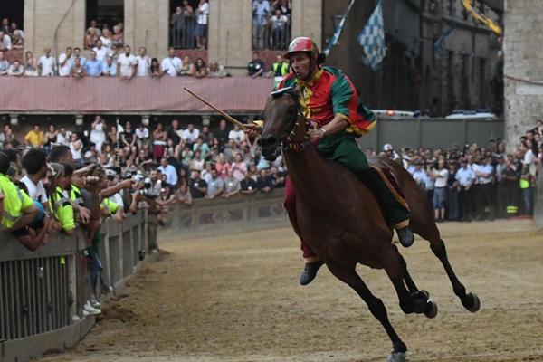 意大利古城举行无鞍赛马节 场面惊心动魄精彩绝伦