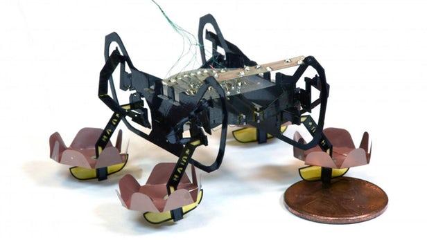 受昆虫启发 微型机器人可穿越水面自行下沉
