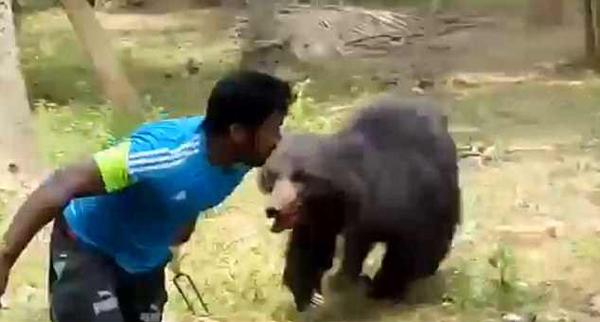 黑熊闯入果园咬死一对夫妻 愤怒村民将其乱棍打死