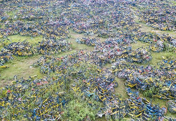"""广州共享单车""""坟场""""雨后杂草丛生 场面壮观"""