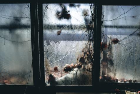 探访韩国废弃实验室 似电影场景阴森诡异