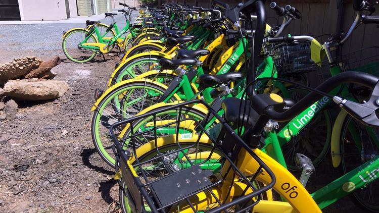 美国小城遭遇共享单车管理难题 ofo单车恐被销毁