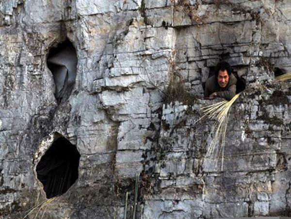 """毕节辟谣""""老人住山洞与鼠为伴"""":2003年获安置,已过世"""