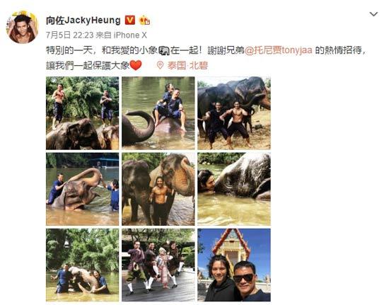 向佐现身泰国 与托尼贾一起呼吁大家保护大象