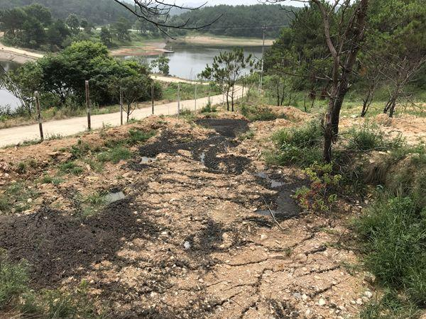 武汉村民挖断山路阻止恶臭淤泥运进村 环保局介入