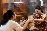 宠物猫主题饮品店亮相南宁 顾客与猫咪玩耍互动