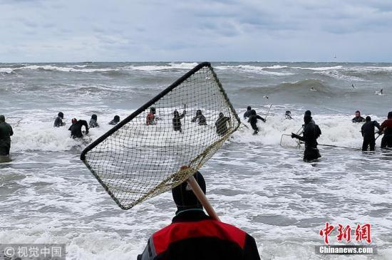 波罗的海将遭遇生态灾难?研究称海水氧气量减少