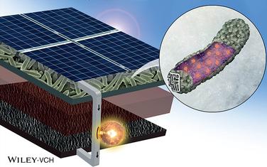 研究人员打造新生物太阳能电池技术 阴雨天也可用