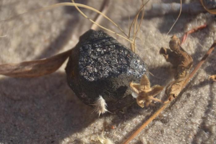 科学家发现小行星撞击地球后留下的陨石碎片